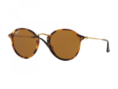 Sunglasses Ray-Ban RB2447 - 1160
