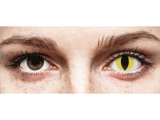 Yellow Cat Eye contact lenses - ColourVue Crazy (2 coloured lenses)