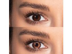 Brown contact lenses - TopVue Color (10 daily coloured lenses)