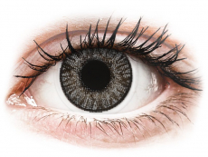 Sterling Gray contact lenses - FreshLook ColorBlends (2 monthly coloured lenses)