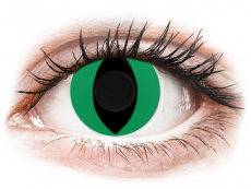 CRAZY LENS - Cat Eye Green - plano (2 daily coloured lenses)