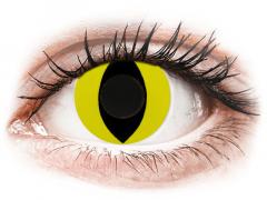 CRAZY LENS - Cat Eye Yellow - plano (2 daily coloured lenses)