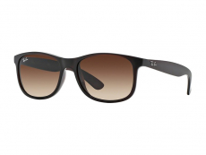Sunglasses Ray-Ban RB4202 - 607313